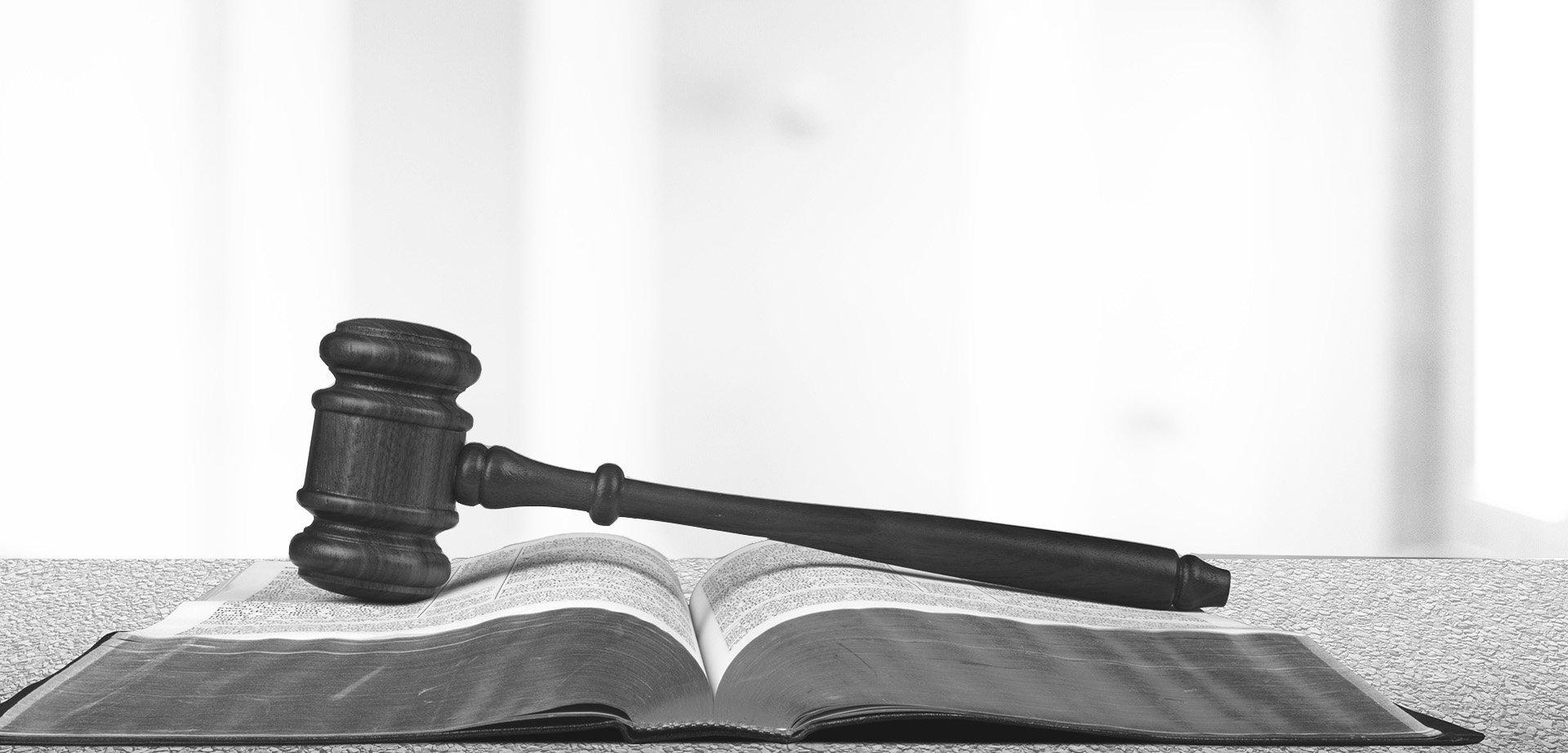 Michael B. Manes, P.A. Lawyer Services